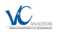 V&C Analistas